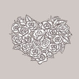 Valentine day heart made of roses. Ink drawing. Hand drawn design element for greeting cards, prints, posters. Vintage vector illustration. All parts are Stock Photography