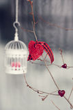 Valentine decorations. Bird cage with knitted Royalty Free Stock Images