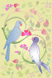 Valentine dove couple Stock Photos