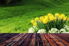 Valentine en bois colorée de fond de fleur de coeur de table colorée de vert bleu de ciel bleu de table de barrière Photos stock