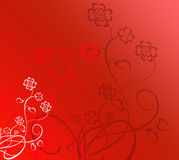Valentine flowers Stock Images