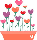 Valentine Flowers Royalty Free Stock Photography