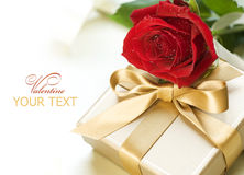 Valentine Gift. Beautiful Valentine Gift with Red Rose Stock Images