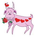Valentine goat Royalty Free Stock Photo