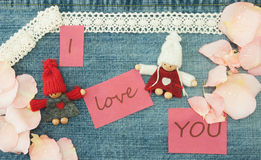 Valentine, greeting card with knitting couple in love and soft p Stock Photography