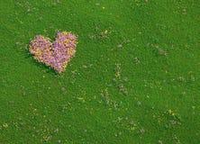 Valentine-hart dat van verse bloemen wordt gemaakt Stock Afbeelding
