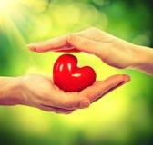 Valentine Heart Imagenes de archivo