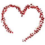 Valentine Heart Fotografia de Stock Royalty Free