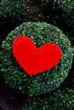 Valentine Heart Arkivfoton