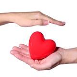 Valentine Heart dans des mains femelles et masculines, d'isolement Image stock