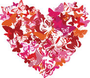 Valentine heart is done from butterflies Royalty Free Stock Photo