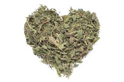 Valentine heart of dried nettle on white background Royalty Free Stock Images
