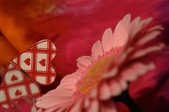 Valentine heart with flower Stock Image