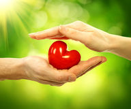 Valentine Heart i man- och kvinnahänder Fotografering för Bildbyråer