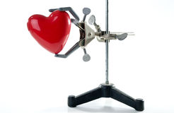 Valentine heart in lab clamp. A view of a red valentines heart held in a chemistry laboratory clamp.  Isolated on white background Stock Images