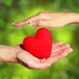 Valentine Heart nas mãos fêmeas e masculinas, sobre o verde fotos de stock royalty free