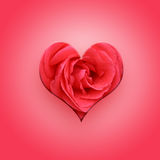 Valentine Heart on pink Royalty Free Stock Photography