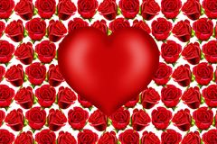 Valentine heart on red roses background Stock Images