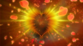 Valentine heart with rose petals, stock footage. Video stock footage