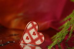 Valentine hearts with grass Stock Photography