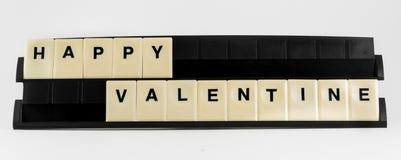 Valentine heureux Photographie stock libre de droits