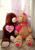 Valentine& heureux x27 ; ours de jour de s Image stock
