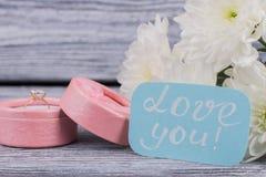 Valentine Holiday Background royaltyfri fotografi