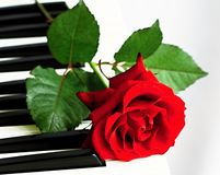 Valentine. Image of piano with a red rose on valentine day Royalty Free Stock Photos