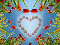 Valentine-kaart als hart met papavers (14 Februari, liefde) Stock Afbeeldingen