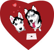 Valentine letter with dogs Stock Photography