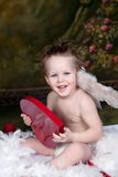 Valentine Love. Young boy as Cupid with wings holding heart shaped valentine's box royalty free stock images
