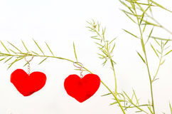 Valentine love symbol hanging on a tree Stock Photography