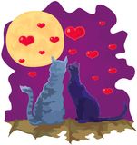 Valentine loving cats couple in moonlight. Vector cats on the roof, valentine design Stock Photo