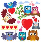 Valentine owls theme collection 1 Royalty Free Stock Image