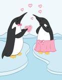 Valentine Penguins Arkivfoton