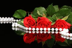 Valentine red rose Royalty Free Stock Photos