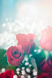 Valentine: Red Rose Bouquet With Baby's Breath Royalty Free Stock Image