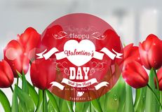 Valentine red tulip background with a close up view with a red round label decorated Stock Photo