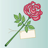 Valentine rose. Red valentine rose with greeting card Stock Image