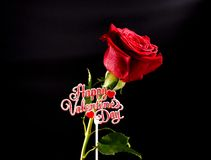 Valentine Rose. Happy Valentines Day sign with a red rose on a black background Stock Photography