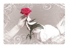Valentine Rose. Vintage background with a rose for Valentine Day Stock Images