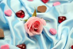Valentine Rose - Love. A pink rose surrounded by little hearts of chocolate, jelly and other materials lying on blue satin fabric Royalty Free Stock Photos