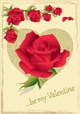 Valentine Roses. Greeting card with heart and roses of Valentine Day royalty free illustration