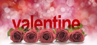 Valentine Roses Header Fotografie Stock