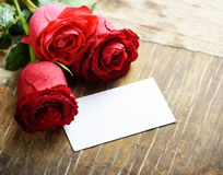 Valentine Roses Stock Images