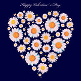 Valentine`s card. Flowers heart isolated Royalty Free Stock Images