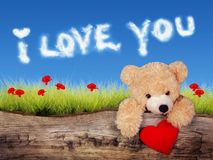 Valentine`s card with teddy bear with heart and love clouds. Valentine`s card with teddy bear with red heart, green field with poppies and blue sky with I love royalty free illustration
