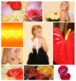 Valentine's day. Collection of photos of the Valentine's day Royalty Free Stock Images