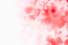 Valentine`s day abstract background of soft red, white bokeh blur hearts. Royalty Free Stock Image