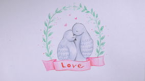Valentine`s day background. Lovely pigeons, doves embracing. Love concept. Valentine`s day background. Lovely pigeon, doves embracing. Love concept. Timelapse stock video